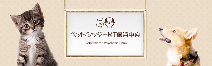 横浜を中心に大切なペットのお世話をさせていただきます。